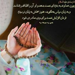 کاربر_ 8782